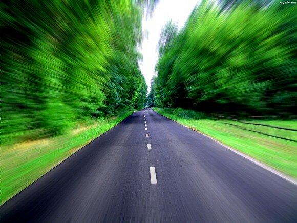 droga-las-przez